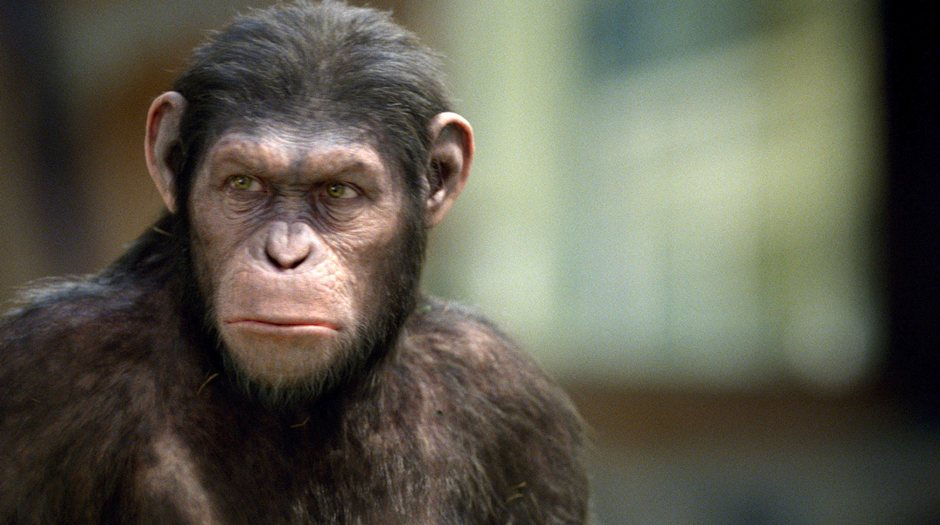 Rise-of-the-Planet-of-the-Apes-2011-Movie-Image-2
